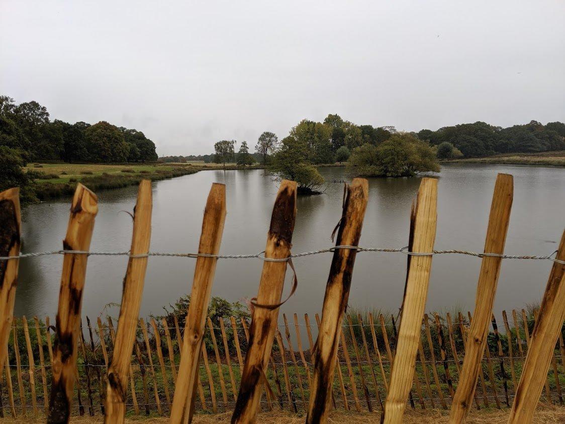 Playground Earth | London | Richmond Park